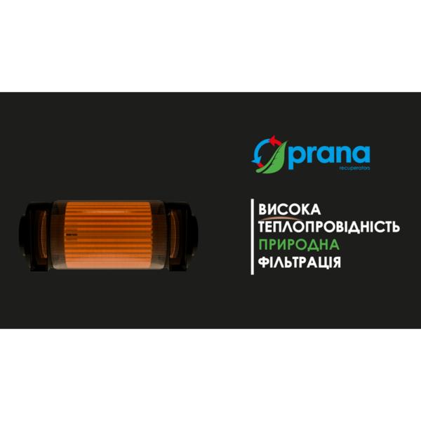 Рекуператоры PRANA 250 / 340A / 340S промышленной серии